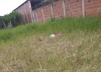 Jovem com Antecedentes Criminais é Encontrado Morto em Terreno Baldio na Periferia da Cidade de Itabaiana