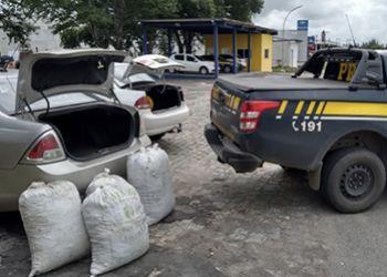 Maconha transportada em veículo com placas de Aracaju é apreendida pela PRF na BR-235