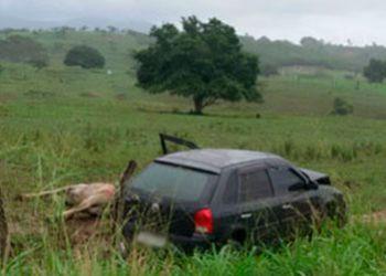 Animal provoca acidente na Rodovia Jo�o Paulo II na regi�o Agreste de Sergipe