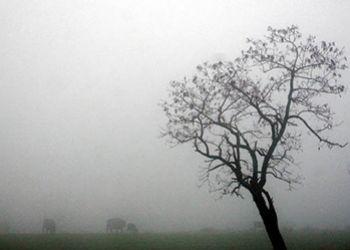 Sem trovoadas: Meteorologia prev� chuvas no Estado at� ter�a-feira