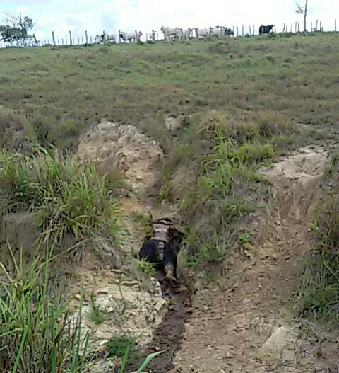 Corpo encontrado fazenda Itabaiana Sergipe