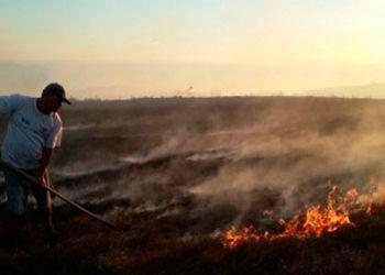 Brigadistas do Corpo de Bombeiros controlam incêndio no Parque Nacional Serra de Itabaiana
