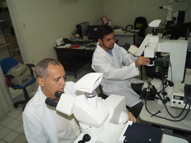 Perícia Balística Instituto Criminalística Alagoas