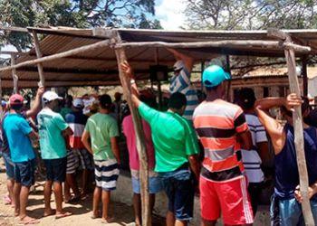 Pelot�o de Pol�cia Ambiental flagra rinha de galo na zona rural de Itabaiana